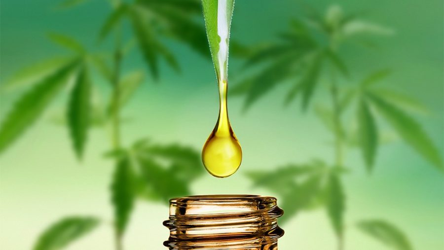 Do I Need Synthetic Urine For A Drug Test For CBD Consumption - 2