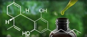 Do I Need Synthetic Urine For A Drug Test For CBD Consumption